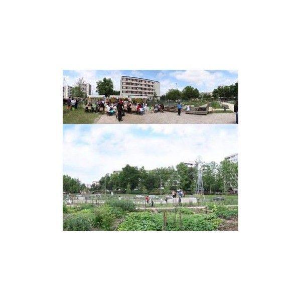 Go ter dans un jardin partag de sevran seine saint for Jardin 93