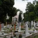 Le Cimetière Musulman à Bobigny, témoignage de l'histoire coloniale