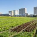 Cité-rando, de Saint-Denis Université à la cité-jardin de Stains