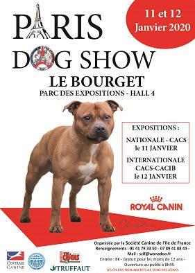 Paris Dog Show Le Bourget janvier 2020