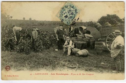 M. Bon Compoint grape harvest in Saint-Ouen © Archives départementales du 93