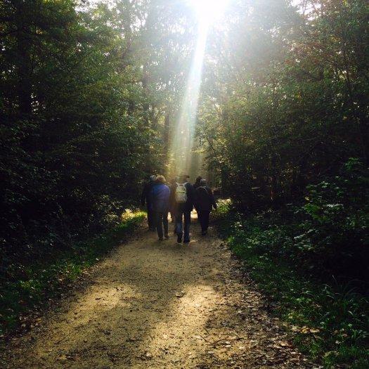 Randonneurs dans la forêt de Bondy