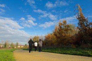 Running path in Butte-Pinson park