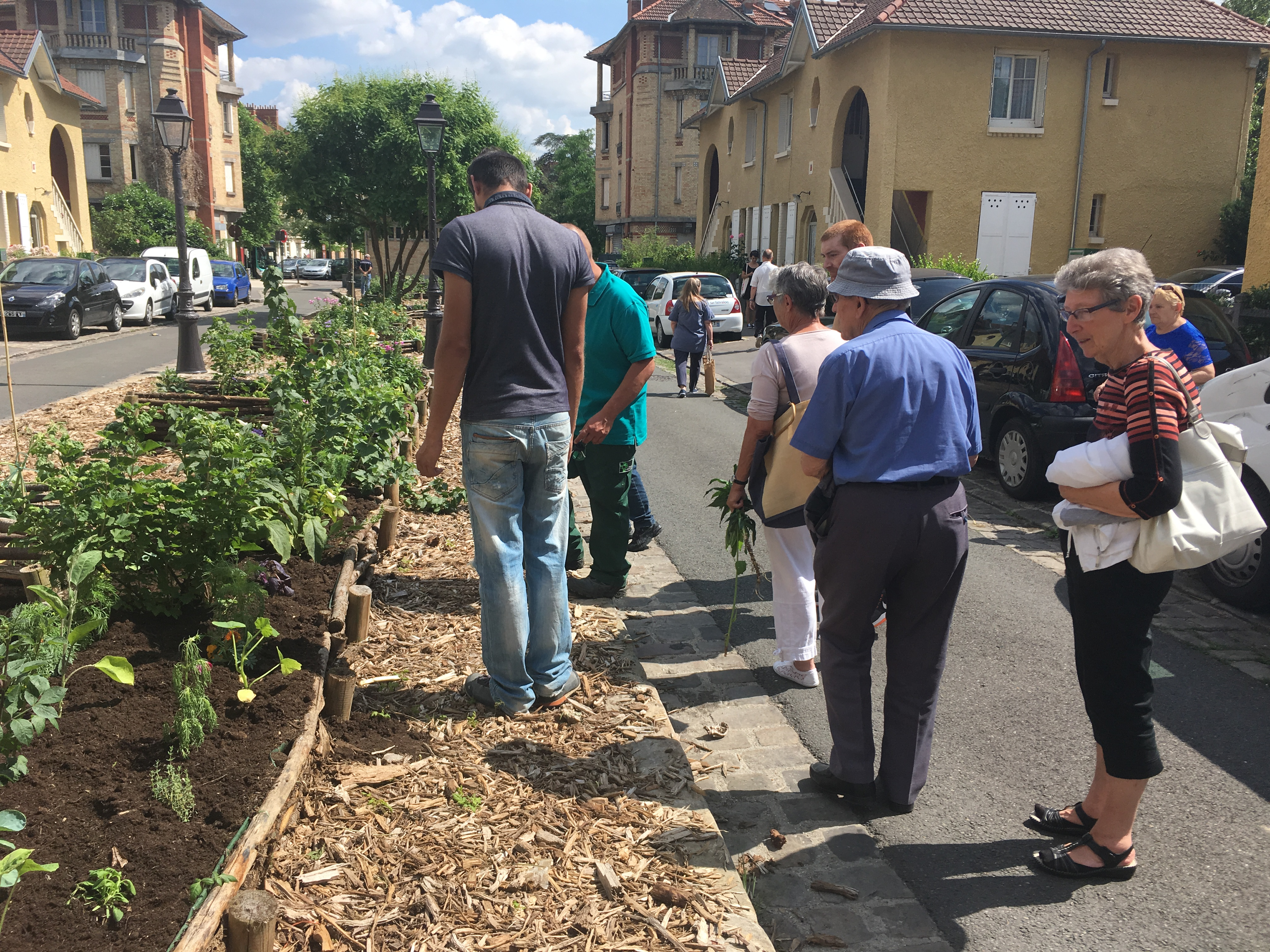 Visite potager Stains Printemps cj 2018