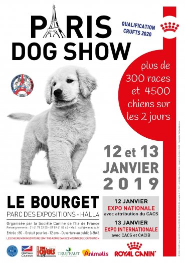 Paris Dog Show 2019 Le Bourget
