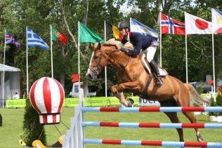 La Courneuve park horse riding meeting