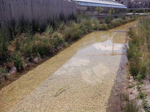 serre parc de saint-ouen cours d'eau le long des jardins