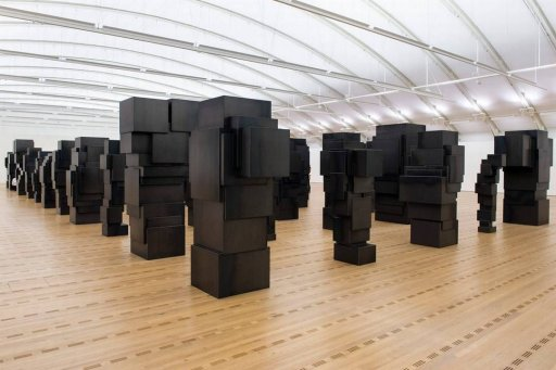 Antony Gormley, Expansion Field