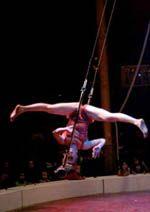Apéro cirques de l'académie fratellini