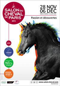 Le salon du cheval de paris 2015 villepinte comp tition - Salon villepinte 2015 ...