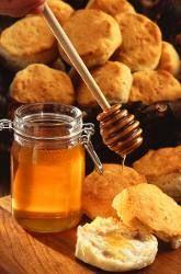 Honey and gingerbread - children's workshop at la Villette