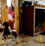 La Ronde des animaux - workshop la Villette