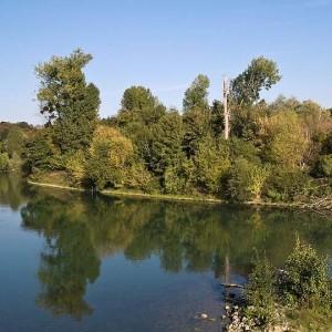 Randonnée sur la Haute-Île entre la Marne et le canal de Chelles