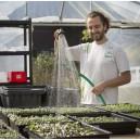Découvrez l'agriculture urbaine, locale et solidaire avec le Paysan urbain
