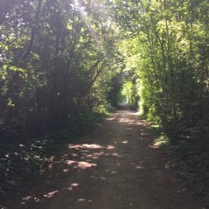 Jeu de piste De Visu - Un parc à remonter le temps