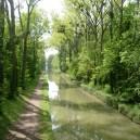 Balade extraordinaire dans le Parc forestier de la Poudrerie - Festival Rhizomes