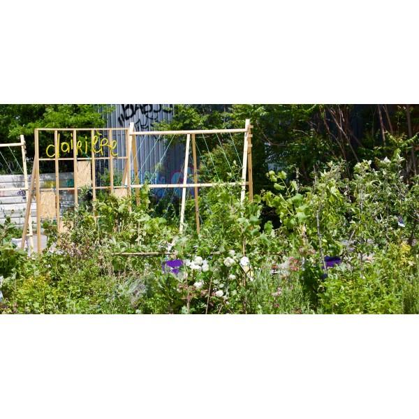 Atelier de jardinage urbain for Site de jardinage