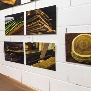 Exposition Le Bois en Majesté - Université populaire d'Est Ensemble