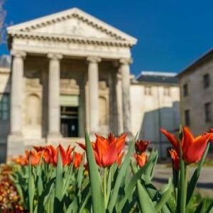 Visite des jardins du mus e d 39 art et d 39 histoire de saint denis - Effroyables jardins histoire des arts ...